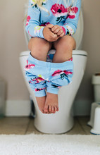 Family Lifestyle Potty Training