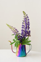 Lupins In A Iridescent Pot