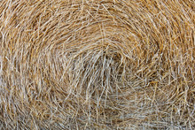 Close Up Of Hay Bale, Saskatch...