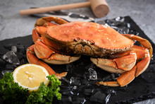 Boiled Dungeness Crab Image