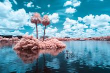 View Of Lake Eola In Orlando, Florida