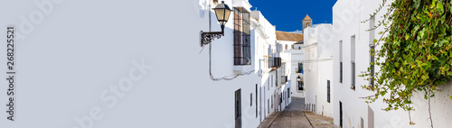 Garden Poster Narrow alley Horizontal cropped image narrow street of Vejer de la Frontera spanish picturesque village, popular hilltop town municipality in province of Cadiz, Costa de la Luz, Spain