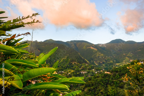 obraz lub plakat View from and of The Blue Mountains at sunset, Jamaica