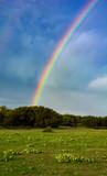 Fototapeta Tęcza - Toenail Trail Rainbow