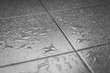 Leinwanddruck Bild - Water drops on the tile floor
