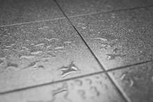 Water Drops On The Tile Floor