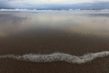 The Tide Pushed A Foamy Line To The Beach