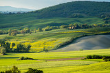 Val d'Orcia landscape in spring. Hills of Tuscany. Cypresses, hills, yellow rapeseed fields and green meadows. Val d'Orcia, Siena, Tuscany, Italy - May, 2019.