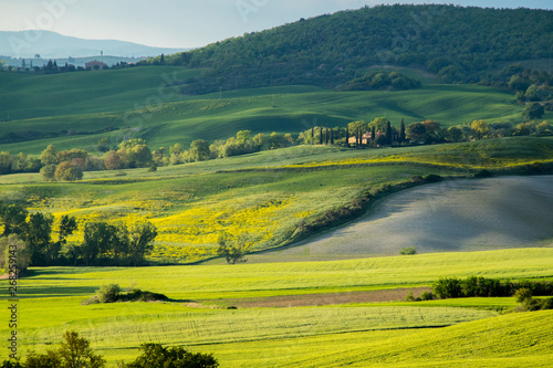 Recess Fitting Panorama Photos Val d'Orcia landscape in spring. Hills of Tuscany. Cypresses, hills, yellow rapeseed fields and green meadows. Val d'Orcia, Siena, Tuscany, Italy - May, 2019.