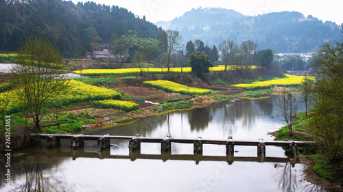 Photo scenery of the town south of the Yangtze River in spring