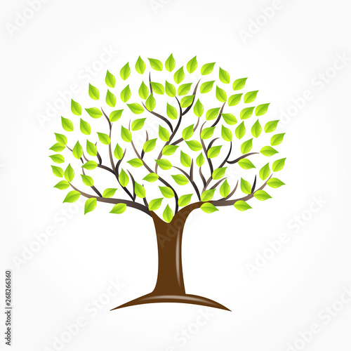 Tree logo vector Wallpaper Mural