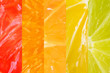 Close up of citrus collage: grapefruit, orange, tangerine, lemon and lime. The concept of healthy fruits, vitamin C. Bright colorful image. Macro.