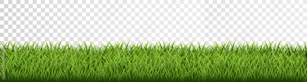 Fototapety, obrazy: Green grass border set on transparent background. Vector Illustration