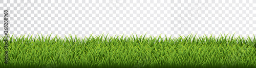 Green grass border set on transparent background. Vector Illustration - 268288968