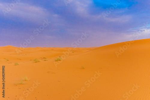 Foto op Aluminium Koraal Beautiful landscape of the dunes of the Sahara Desert at dusk, Merzouga, morocco