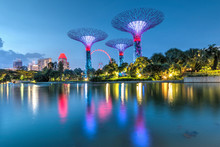 Singapore- Gardens By The Bay....