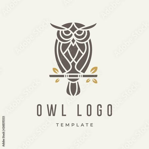 Photo Stands Owls cartoon Owl Logo Design Template