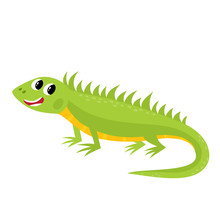 Vector Illustration Of Cartoon While Animal - Iguana Isolated On White