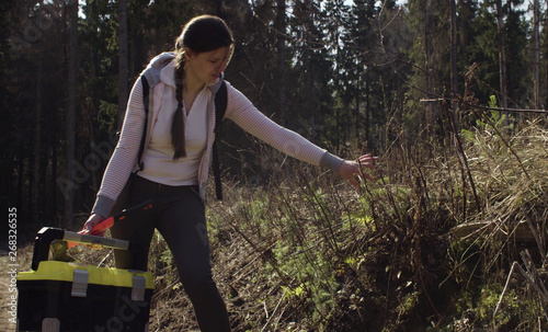 Valokuva  Ecologist looking at young trees on the logging and smiling