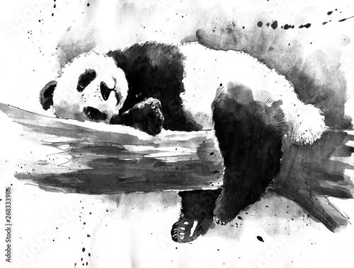 Watercolor black and white panda drawing Wallpaper Mural