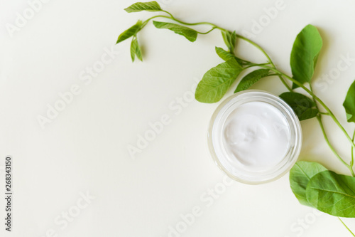 face-cream and greenery on a white background with copy space. natural organic cosmetic facial. place for text . top view