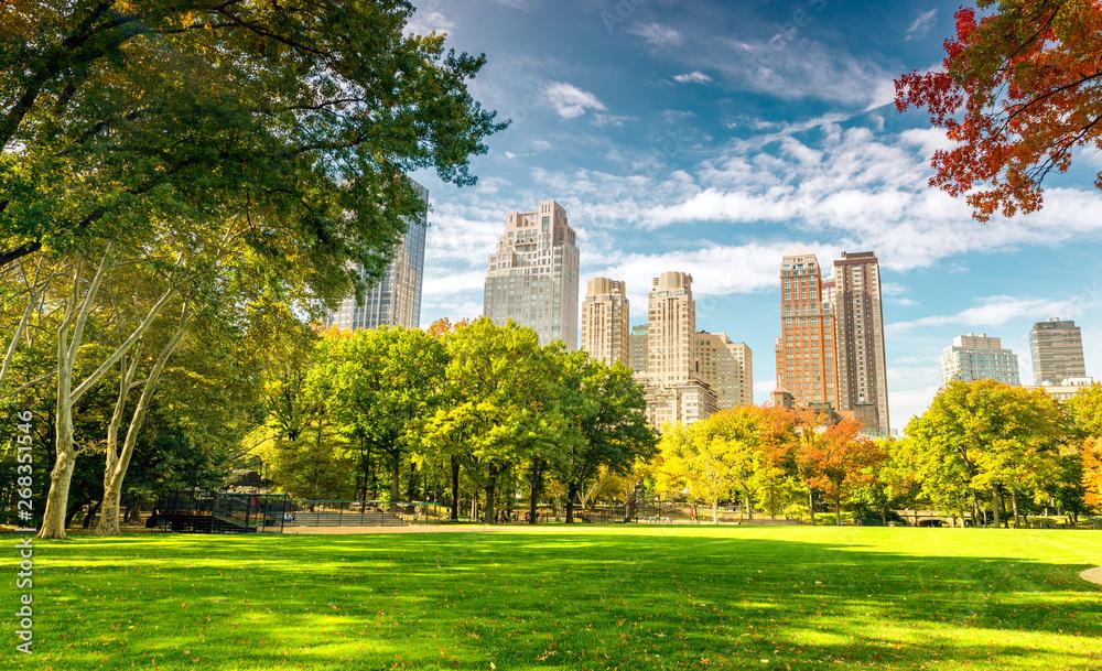 Fototapeta Beautiful foliage colors of New York Central Park