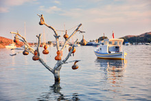 Decorative Gourd Calabash Lamps Hanging On A Tree In The Sea Near A Fishing Boat