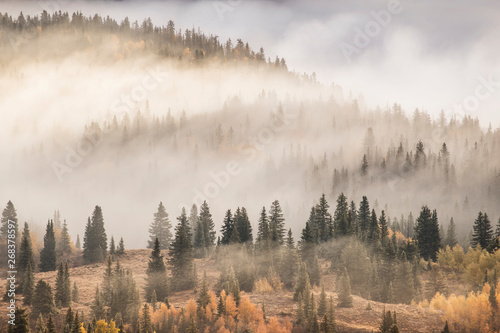 Poster Ochtendstond met mist Scenic view of mountain covered with fog in San Juan National Forest