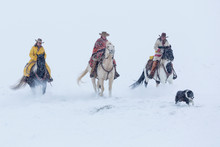 Cowgirls Riding Horses On Snowy Landscape During Winter