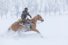 Side View Of Cowboy Riding Horse On Snowy Landscape During Winter