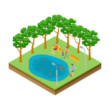 Isometric Pond With Ducks In The City Park Vector Illustration. Pond In Park, Duck Swim In Lake