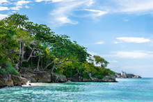 Lush Trees With Exposed Roots On Edge Of Cliffs By The Ocean On Tropical Caribbean Island Coastline. Turquoise Blue Sea Water Along Coast On Sunny Summer Beach Day. Scenic Outdoors Background Setting.