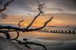 Sonnenuntergang an der Küste von Malaysia, mit Wasserspiegelung und vertrocknetem Baum im Vordergrund