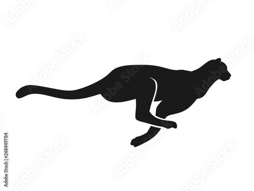 Fotografia Running Cheetah silhouette monochrome color