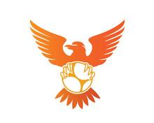 Modern Flying Eagle Soccer Logo Illustration In Isolated White Background