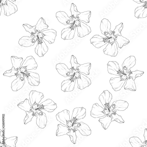 Poster Floral black and white Seamless pattern. Plant in blossom, branch with flower ink sketch. Template for a business card, banner, poster, notebook, invitation, color book