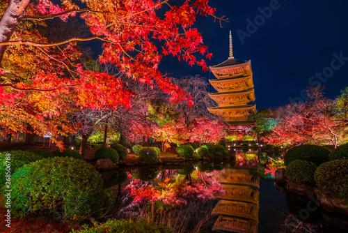 Poster de jardin Kyoto 京都 東寺の紅葉 夜景