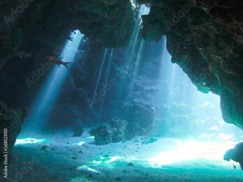 Foto auf AluDibond Blau türkis Underwaterphoto of scenery with sunlight and beams underwater