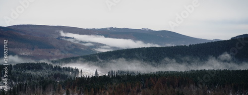 Poster Morning with fog Fog over the forest in late autumn. Mystical landscape panorama of the wilderness in the Harz mountains, Harz National Park, northern central Germany.