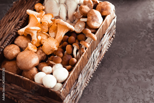 Fotografie, Tablou Variety of uncooked wild forest mushrooms in a wicker basket on a black background, flat lay