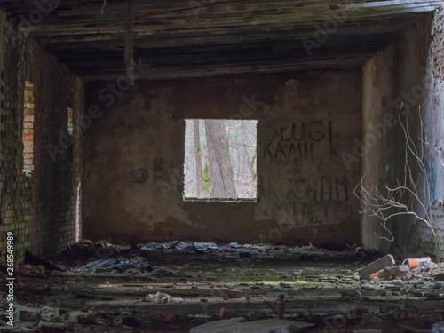 Widok z okna w starym, opuszczonym budynku. - 268549989