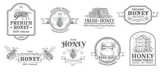 Značka farme meda. Pčelarski logotip, retro pčelinje značke i vintage ručno nacrtana medovina oznaka vektor ilustracija set