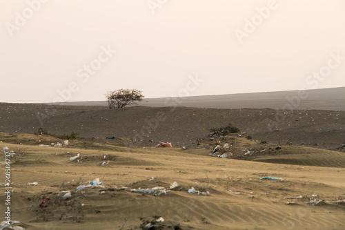 Poster Grocery basura en el desierto