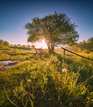 Wild Nature Of Ukraine