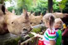 Kids Feed Rhino In Zoo. Family...