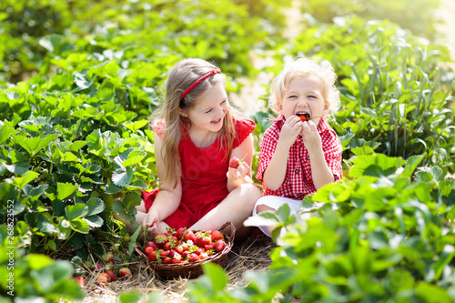 Cadres-photo bureau Pain Kids pick strawberry on berry field in summer