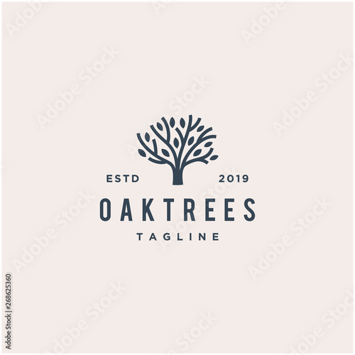 oak tree vector logo design Fototapet