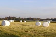 Round Hay Bales In White Plast...