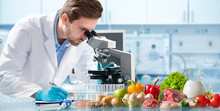 Food Quality Control Concept