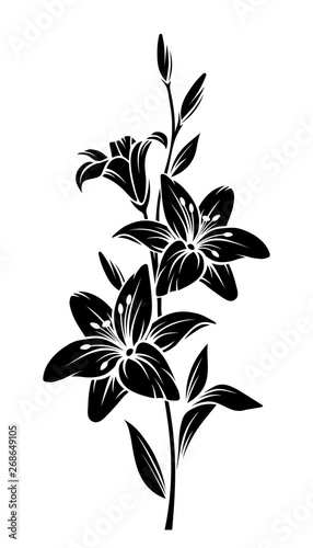 Stampa su Tela Vector black silhouette of lily flowers.
